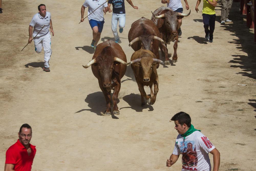 Fiestas Cerceda4