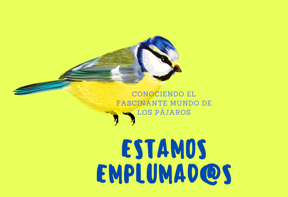 18 abril_estamos emplumad@s